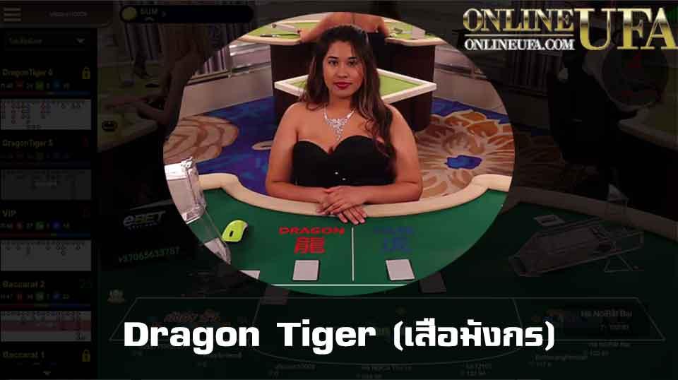 Dragon Tiger (เสือมังกร)